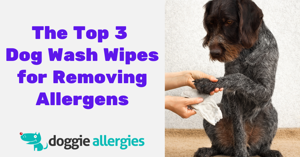 The Top 3 Dog Wash Wipes for Removing Allergens